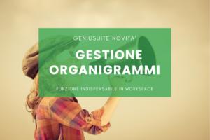 gestione organigrammi geniusuite per workspace
